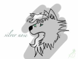 Silver Nose by Aaloka