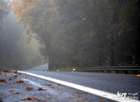 Fall Foggy Road by RoadKillConcepts