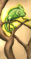 Chameleon by whinnteress