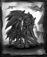.:Sonic and Amy:. by AmytheRose