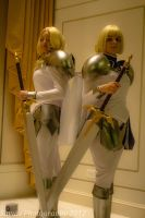 Claymore- defend this land by sayuri13