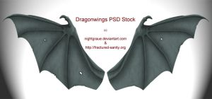 Dragon Wings PSD STock by nightgraue