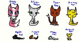 cats you know so far by thunderwolf2372