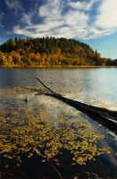 Norwegian autumn 2 by Fishermang