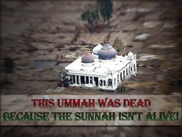 Without Sunnah by MaiPau