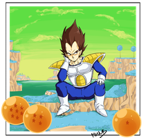 Prince Vegeta on planet Namek by MouHitoriNoBoku