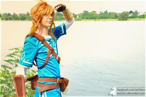 Link (Zelda: Breath Of The Wild) - Open Water by Echolox