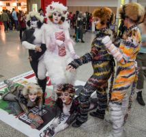 MCM Expo May 2014 139 - Cats by cosmicnut