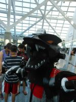 Lightning Saix at Anime Expo 2013 4 by MidnightLiger0
