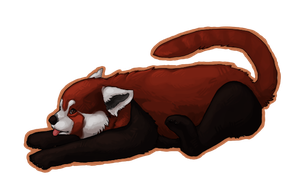 red panda goes derp by prefined