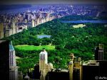 Central Park by Puffy-diaNa