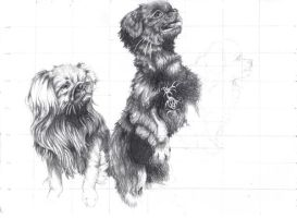 Unfinished - Dogs by SgtMilenko