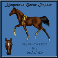 Kometava Horse Import #16 SOLD by Zephyrra