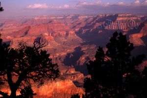 Grand Canyon IV by AletheaDo