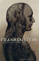 Frankenstein: Or the modern Prometheus cover by Deimos-Remus