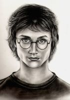 Harry Potter by elvenart24