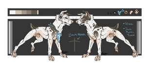 Custom Canine Design - SOLD by KingDirty