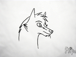 Snowy Howls - Animation by Wolf-Chalk