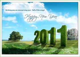 new year by xishan1