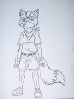 Young Fox McCloud by ACdraw