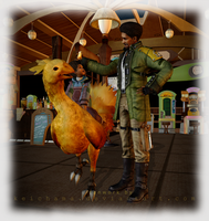 Chocobo Cafe by keichama