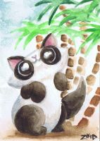 Funny cat watercolour panda by KingZoidLord