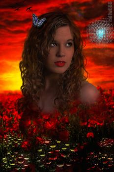 Fantasy In Red by ralfw666