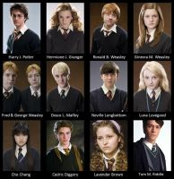 If Hogwarts Had a Yearbook- HP by Alwaysss-Sslytherin