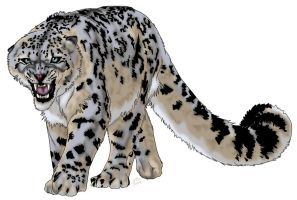 Snow Leopard by ProdigyDuck