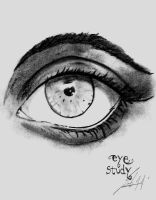 Eye Study by BrunovicArt