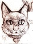 cat im a kitty cat by Squibley