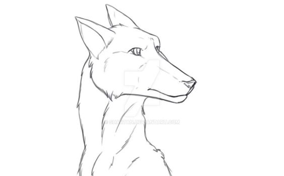 Canine Practise by Shartan