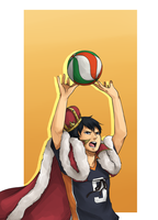 Haikyuu!!: King's Toss by ozamham