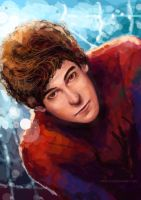 The Amazing Spider Man by IPPO-Lita