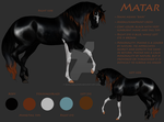 Matar Reference by Misted-Dream