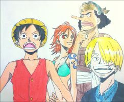 Some of the Strawhats by swimli888