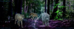 TMB Banner by FallenBloodWolf