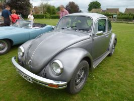 Volkswagen Beatle by photodash