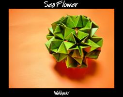 Sea Flower - unit by wolbashi