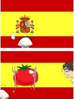 Spanish Flag by Birvan