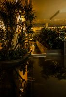 Calgary Mall Garden by KRHPhotography