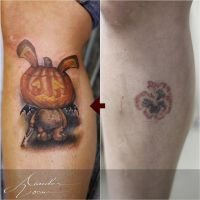 Pumpkin cover up by xandervoron