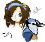 Jay Sketch by Pigeonartist