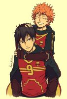 Quidditch Duo by Laven96