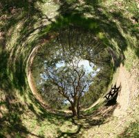 Stereographic Panorama I by Biogenesis