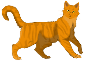 .:Lionblaze:. by Lithestep