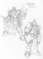 Seekers-Paladins by eightball6219