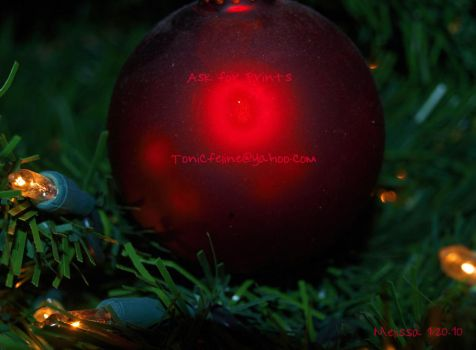 Red Christmas by TonicFeline