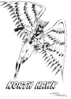 North Hawk by JimMcClain