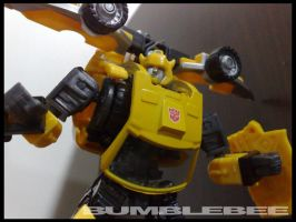 Photography - Bumblebee by Seaedge